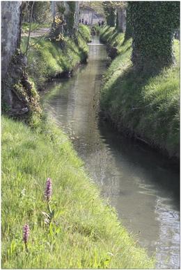 canal des alpines à Eyragues