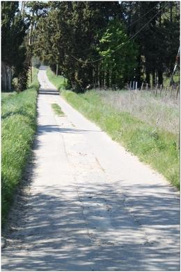 le Chemin de Pie Vin à Eyragues